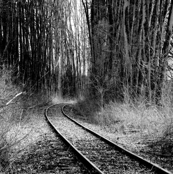 Old tracks  5
