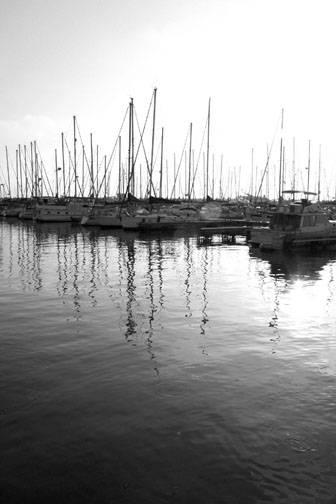 Herzaliya marina