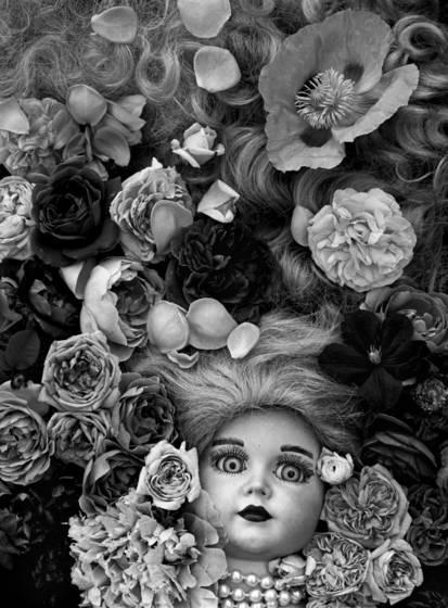 Silvia with poppy