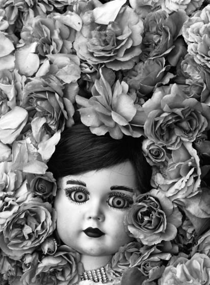 Silvia with rosarium uetersem roses