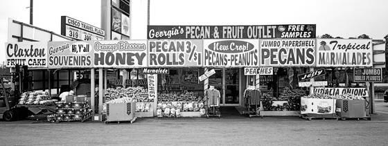 Pecan   fruit