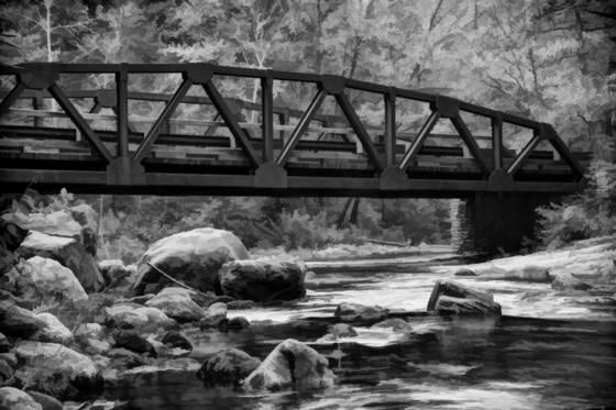 Bridge over the davidson