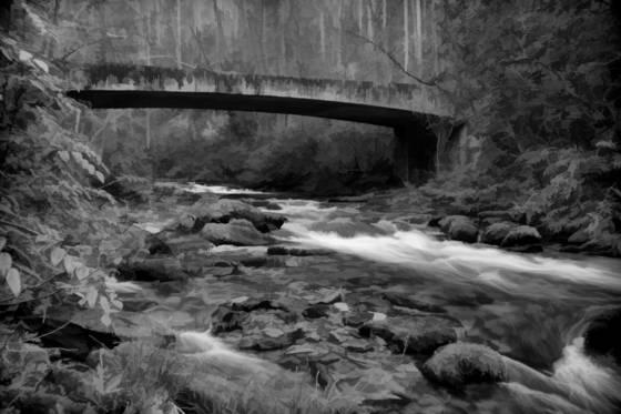 Cathys creek