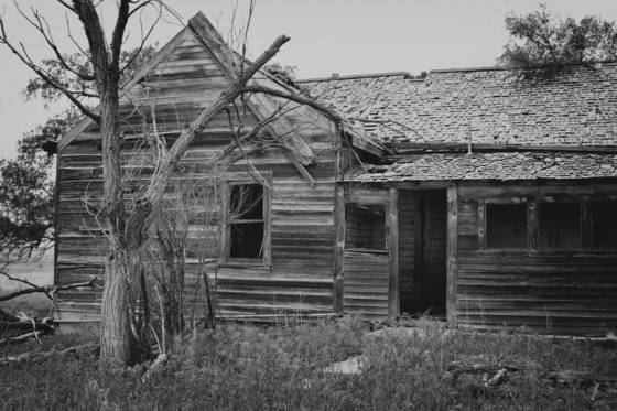 Weld c homestead
