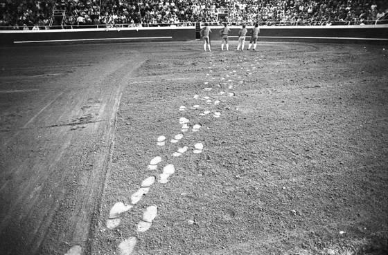 Forcado footprints