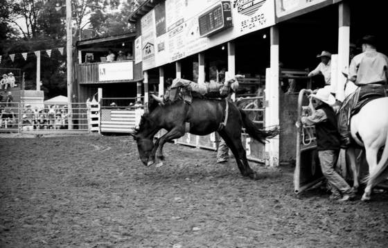 Rodeo08