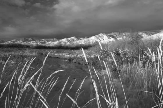 Bridger mtns montana 2012