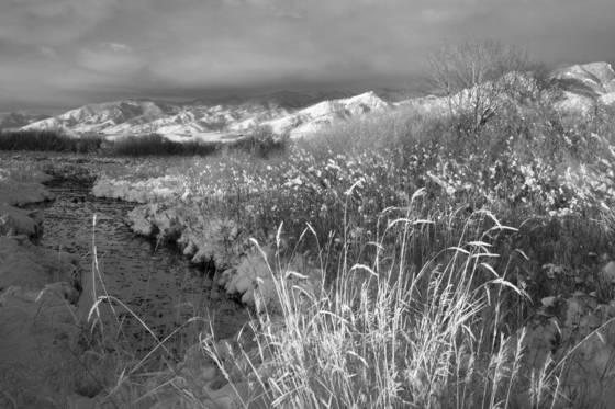 Bridger mtns montana 2012 7210
