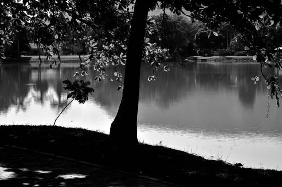 Lago girardot