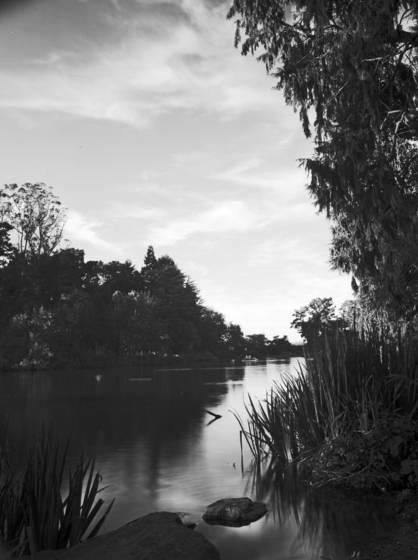 Stow lake 01