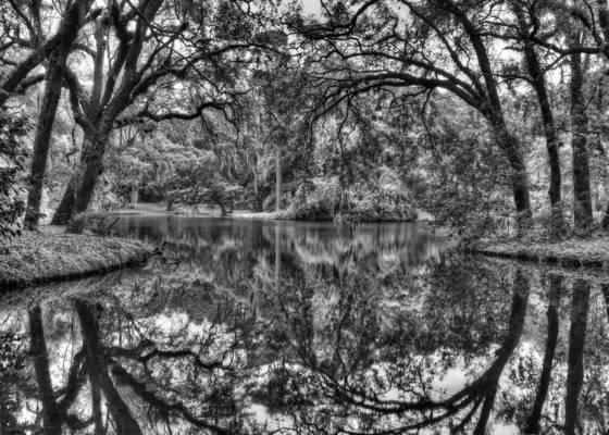 Mirror cove