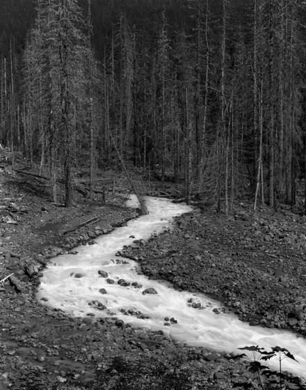 Tahoma creek