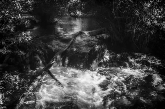 A moody creek