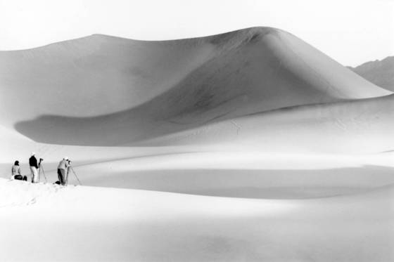 Lure of the dunes