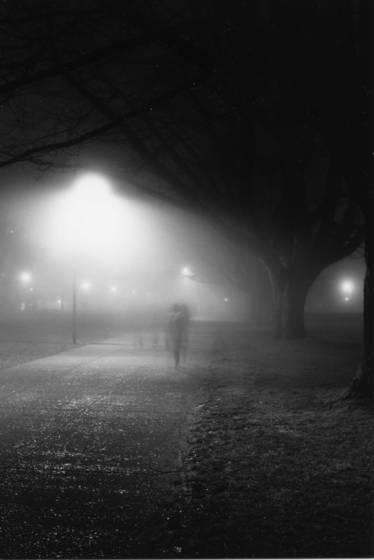 Foggy evening 2