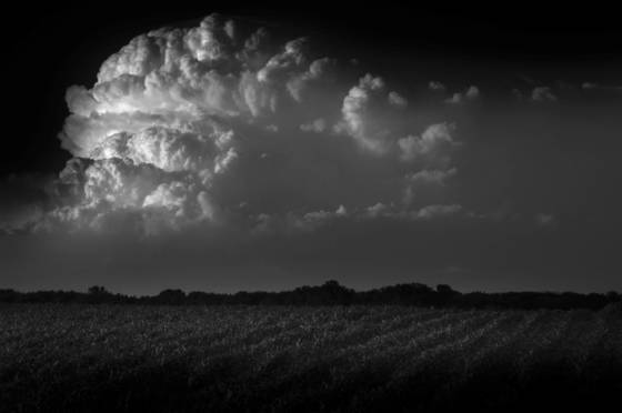 Thunderhead   corn field