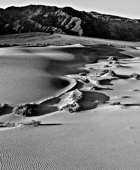 Rippling dunes
