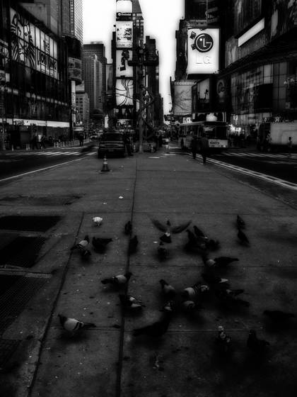 Flock at times square