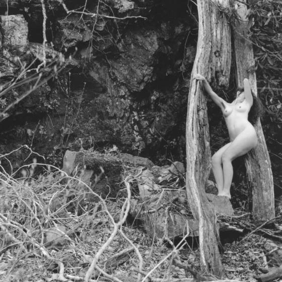 Forest nude 4