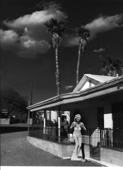 Travels with marilyn