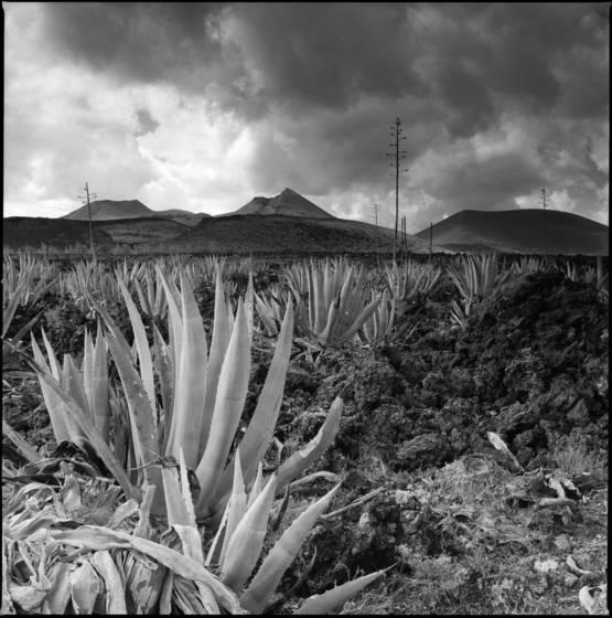 Lanzarote timinfaya 582