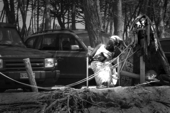 Badger cadger 3