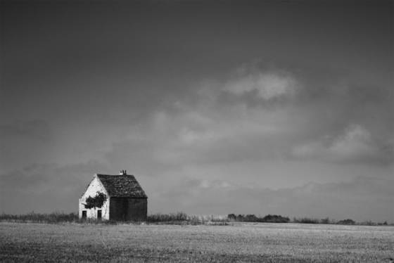 French countryside 11