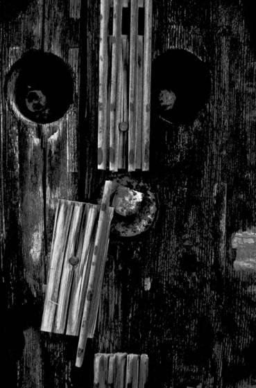 Chemung portrait