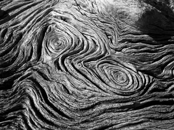 Dead oak patterns
