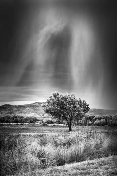 Rain spirit
