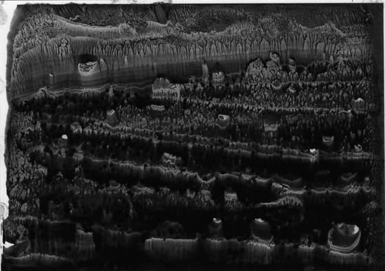 Concepts landscape 1