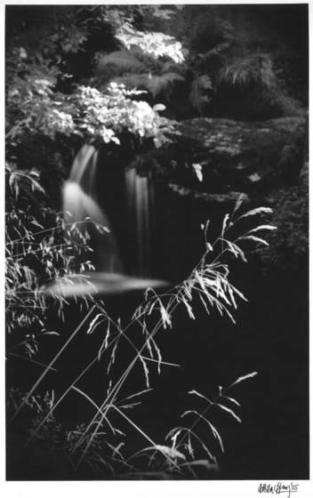 From jizera mountains series