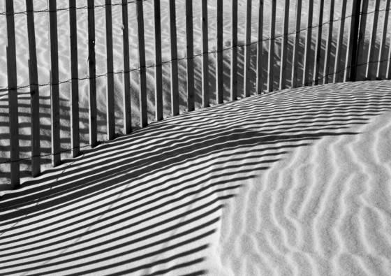 Beach fences 5224