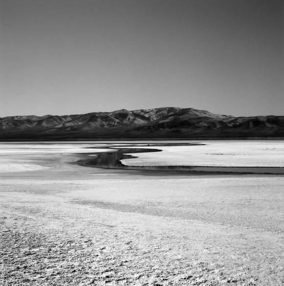 Salt flat swamp