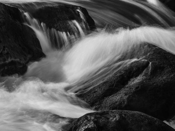 Lower merced river 0790