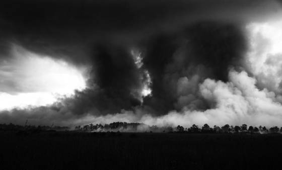 Sky everglades forest fire