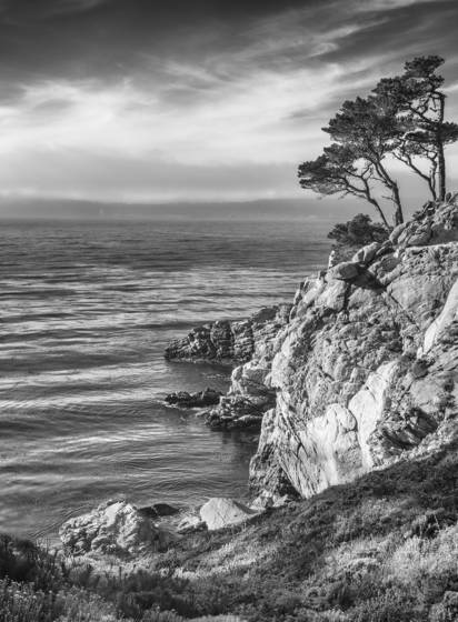 Point lobos late afternoon