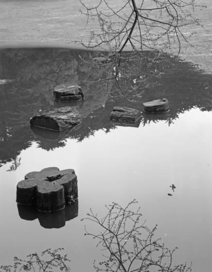 Stow lake  3