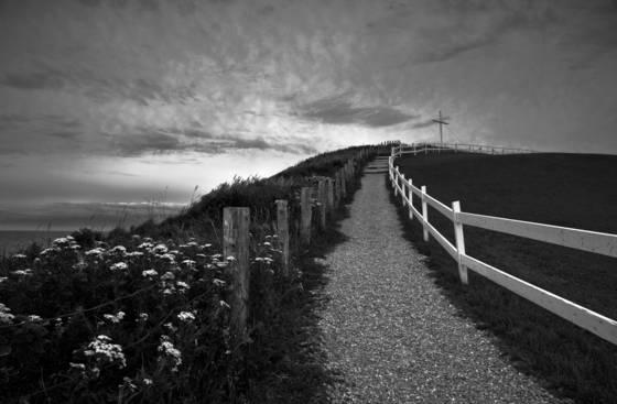 Pathway   cross