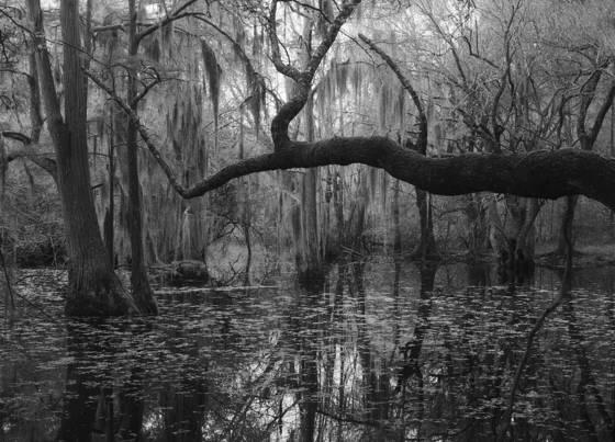 Haw pond