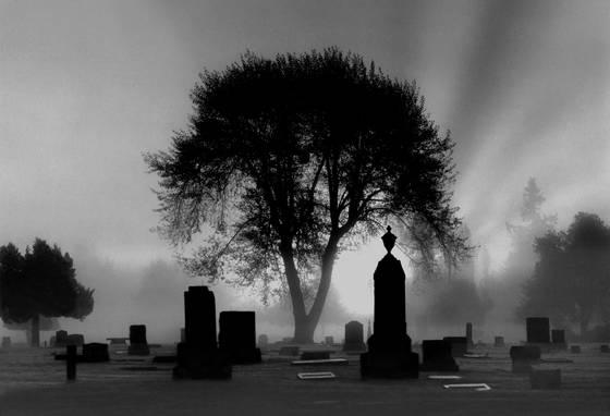 Cemetery at dawn