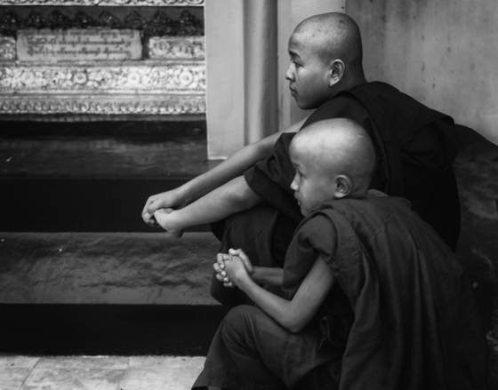 Young buddhist priests