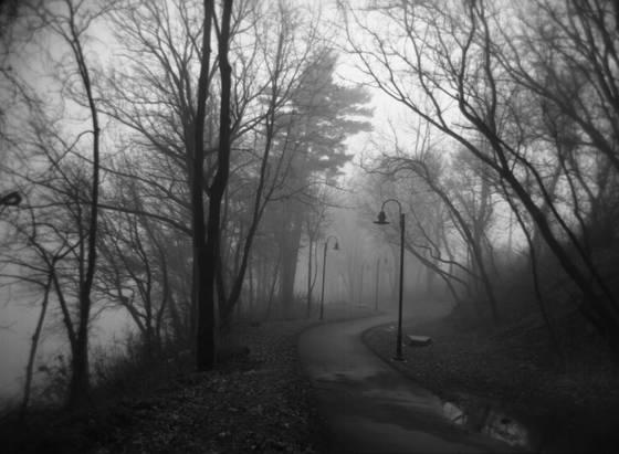 Pathway ii