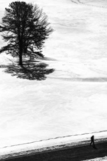 Winsor dam in winter