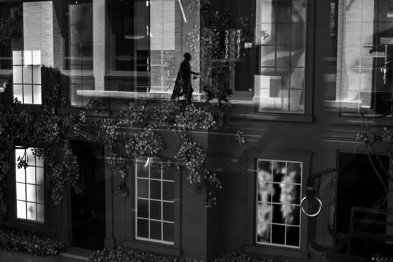Magic in the window