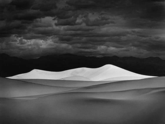 M   white dune