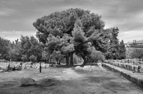 Agrigento 3