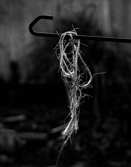 Hanging twine  carlsbad