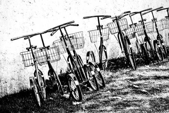 Amish bicycles