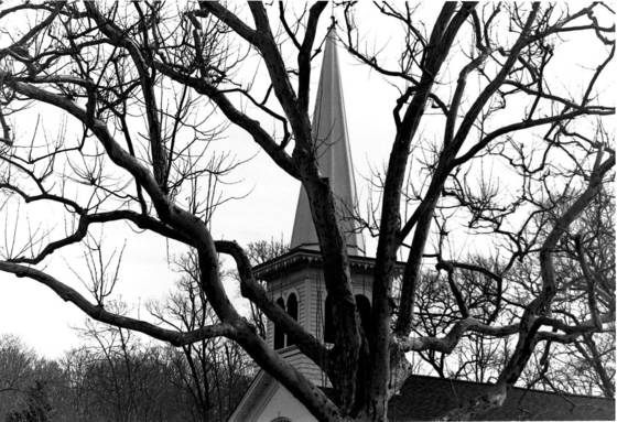 Church through the trees